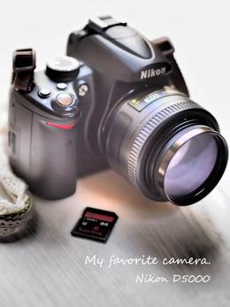 わたしのカメラ2015-7-29.jpg