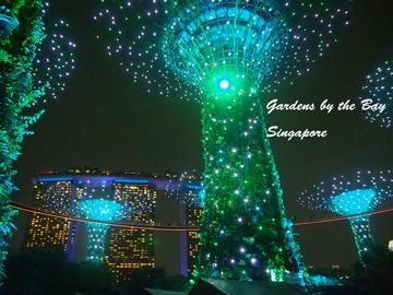 シンガポールショー2.jpg