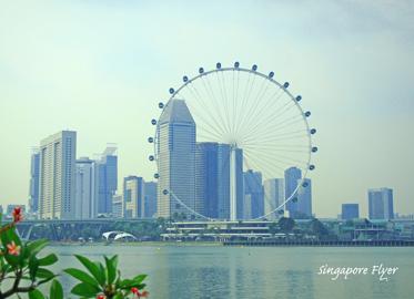 シンガポールフライヤー.jpg