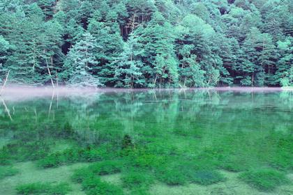上高地明神池一之池.jpg