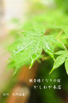 別所温泉3.jpg