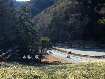 木落し坂.jpg