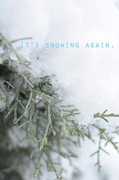 雪1-23.jpg