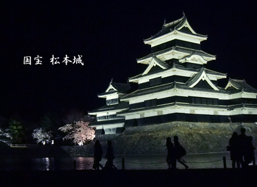 松本城夜桜4-18①.jpg