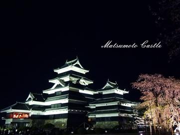 松本城夜桜4-18②.jpg