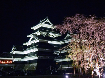 松本城夜桜4-18③.jpg