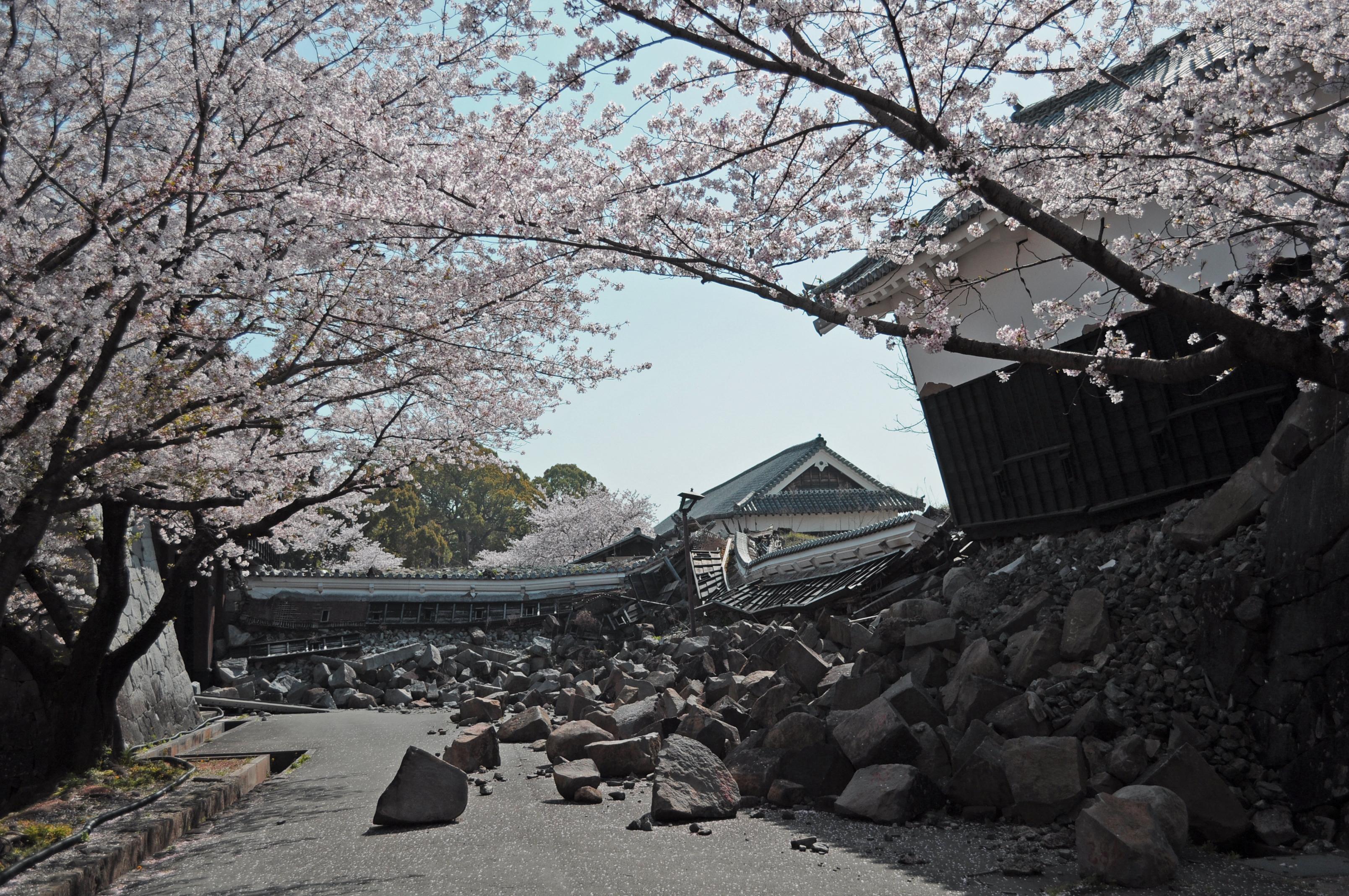 熊本城復旧2018② (1).jpg