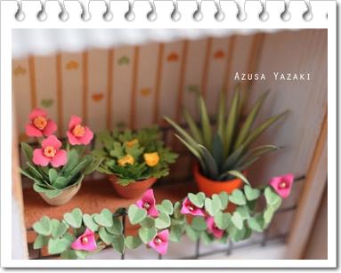 鉢植え2015-7-23.jpg