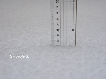 降雪量1-22.jpg