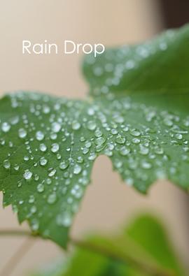 雨のしずく.jpg