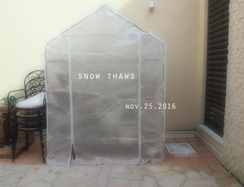 11月の雪翌日.jpg