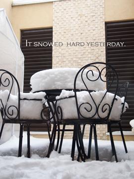 2016大雪.jpg